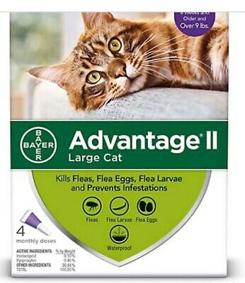 Bayer Advantage II For Large Cats over 9Lbs 4 pack #2246