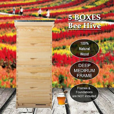10-Frame Size Bee Hive Beekeeping Kit  Frame/Beehive Frames W/Queen Excluder