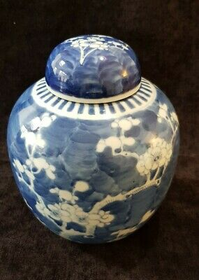 Large Antique Chinese Prunus Blue & White Ginger Jar Kangxi Double Blue Circle