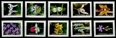 US 2020 Stamps Wild Orchids MNH,(10) Singles From Booklet
