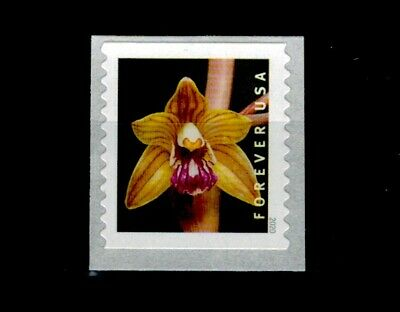US 2020 Wild Orchids Single Stamp MNH From 3K Coil, Hexalectris Spicata