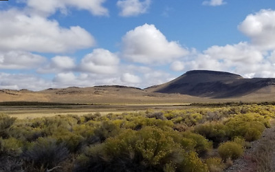 Rare 60 Acre Ranch just outside of Winnemucca, Nevada! Cash Sale No Reserve!!