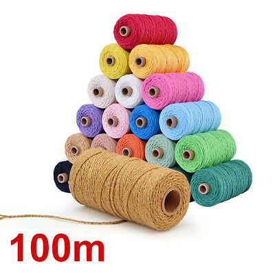 2MM Hand Craft Twisted Macrame Rustic Rope Colorful Cotton Cord String EU DIY