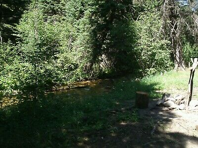 Dixie Idaho Area 20 Acre Placer Gold Mining Claim On Crooked Creek