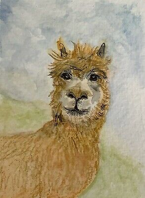 """Artist Trading Cards ACEO Cards Original Painting Lama 2.5"""" X 3.5"""""""