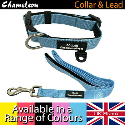 PREMIUM Neoprene Dog lead & Collar sets, 5 colours with 4 Sizes of collar