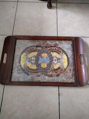 Vintage Wooden Butterfly Tray With Glass
