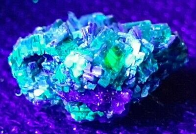 RARE Fluorescent Torbernite on MATRIX. Uranium ore. high activity. mineral