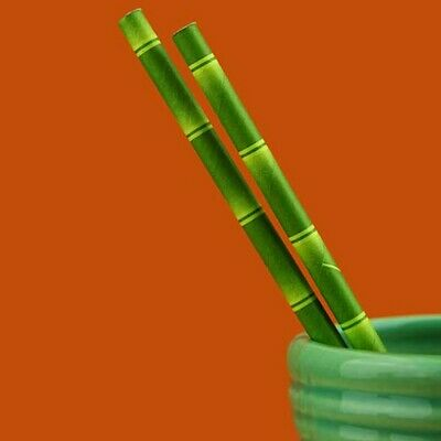 Bamboo Paper Straws (250) Biodegradable Tropical Beach Theme Free Postage