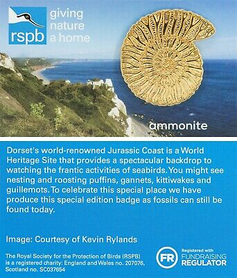 RSPB Pin Badge | Special  | ammonite | [01647]