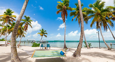 Pre-Foreclosure -Waterfront Area Land Lot in Florida Keys Monroe County-Tax Lien