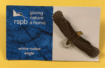 RSPB GNaH Pin Badge On Blue Card - White-tailed Eagle Bird Of Prey