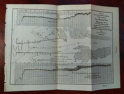 1905 Chart Map of Mississippi River, Jetty, Burrwood
