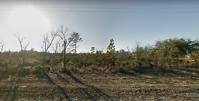 0.22 Acres In Interlachen- Putnam County, Florida. Near Power/Direct Road Acess