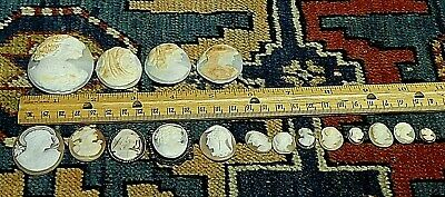 Collection Of 17 Pieces 19th Century Hand Carved Shell Cameos Some Signed