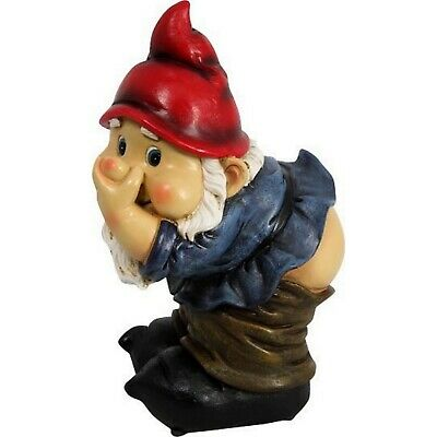 Funny Garden Gnome Statue Farting Fart Rude Cheeky Gnomes Novelty Adult Gift New