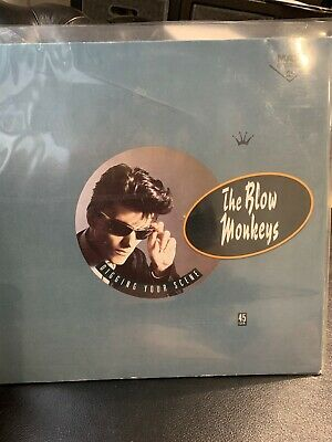 "Digging Your Scene Blow Monkeys 12"" vinyl single record (Maxi) UK PT40600 RCA"