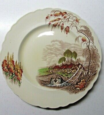 Vintage Wilkinson Ltd Royal Staffordshire Pottery England Dinner Plate