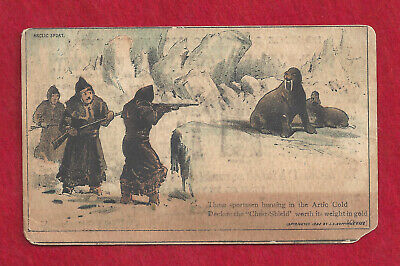 """1882 """"Congers"""" Chest Shield Undershirt Advertising Card, Arctic Shooting Walrus"""