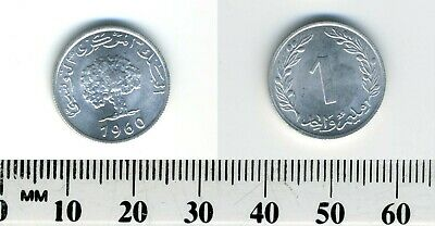 Tunisia 1960 - 1 Millim Aluminum Coin - Oak tree and date