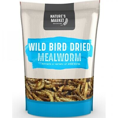 Mealworms Dried, Premium Wild Bird Food Large Chubby Worms
