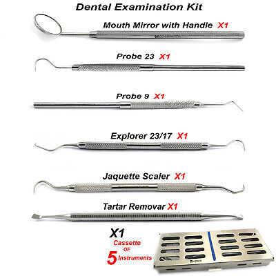 Hygienist Examination Tooth Explorer Probe Tartar Remover + Cassette For 5 Tools