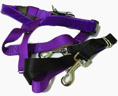 """2 Hounds Design PK 1SM PR Freedom No-Pull Harness with Leash, (1"""" Wide), Purple,"""