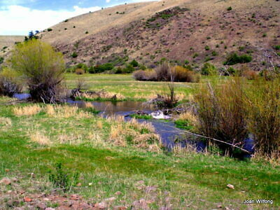 Colorado Mountain Property with Middle Creek & 5th Wheel. Elk, deer, trout 28 ac