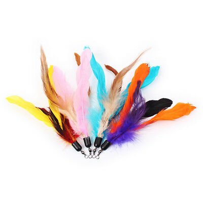 Replacement Cat Teaser Feathers - Various Colours  (individually wrapped)