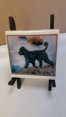 Rare Portuguese Water Dog Art Print on Tile Signed #55/499 With Stand