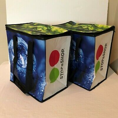 Earthwise Set of 2 Insulated Grocery Tote Bag Hot Cold Thermal Cooler Stop Shop