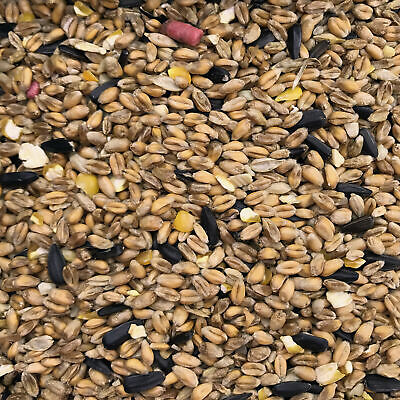 4kg Wild Bird Food Tub Garden Suitable Feeders Bird Tables Winter Feed Mixture