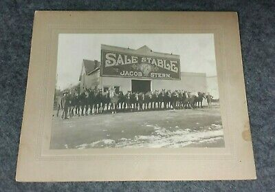 Antique Cabinet Photo Sale Stable Building Horses JACOB STERN Equestrian