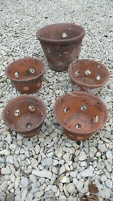 Collection of Vintage or Antique Garden Terracotta Orchid Pots