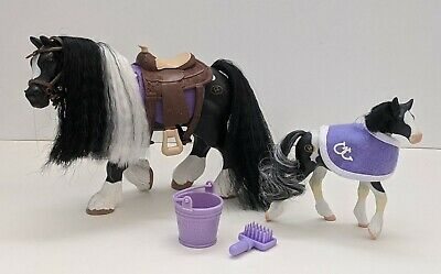2007 Grand Champions Rare Gypsy Vanner Clydesdale Mare and Foal Set