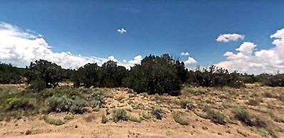 Beautiful Treed 5 Acre Lot outside of St Johns, Arizona Great Location & Access!