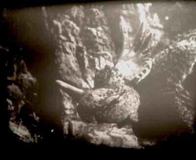 Son of Kong RKO 1933 16mm sound complete feature