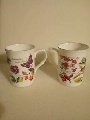 Vintage Rose of England Bird, Butterfly, Flowers Fine Bone China 2 Cups.