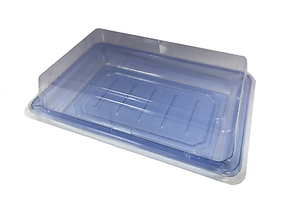 """PET Togo Sushi Container with Lid Square Blue Clear Salad Cake Tray 6.5 x 4.5"""""""
