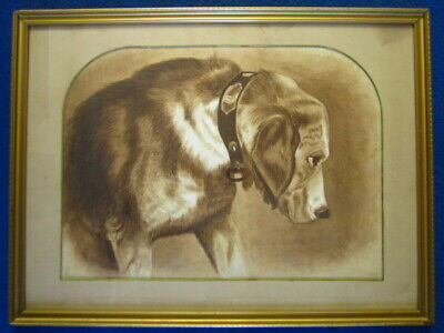 Fine antique sepia watercolour portrait of a hound dog