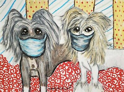 Dog Art Print 5 x 7 Chinese Crested in Quarantine Face Masks by artist KSams