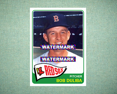 Lou Berberet Boston Red Sox Custom Baseball Card 1958 Style Card That Could Have Been by MaxCards Mint Condition 2018
