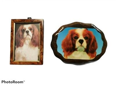 Vintage Pair Of Cavalier king charles spaniel Wall Hanging Picture & Plaque Set