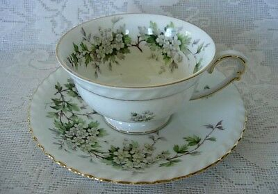 Vintage FRANCONIA/KRAUTHEIM Hawthorn Footed Cup & Saucer- Made in Germany
