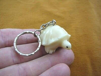 (TNE-T-TUR-255A) Turtle tortoise TAGUA NUT Carved Vegetable palm Key ring CHAIN