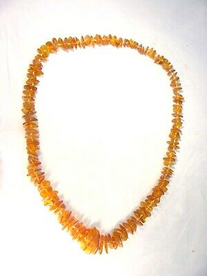 "BUTW baltic amber chip 27"" strand beads 7059A"