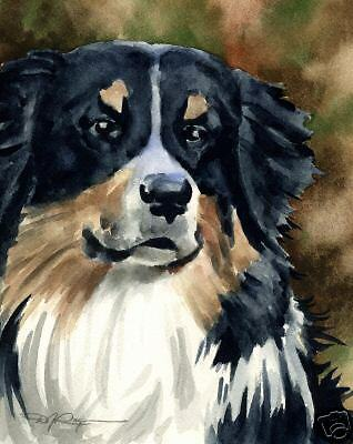 AUSTRALIAN SHEPHERD Dog Art Print 11 X 14 Signed DJR