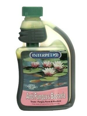 Blagdon Pond Anti Fungus & Bacteria 250ml Interpet Fish Treatment
