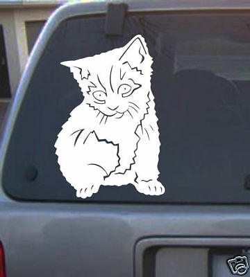 cat 6 inch kitty feline lover vinyl Decal sticker different color animal new 10a