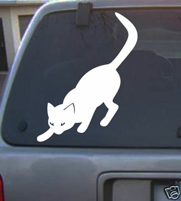 cat 6 inch kitty feline lover vinyl Decal sticker different color animal new 22a